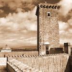Sul tetto del castello