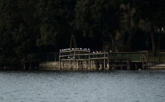 Stasera tutti al lago...