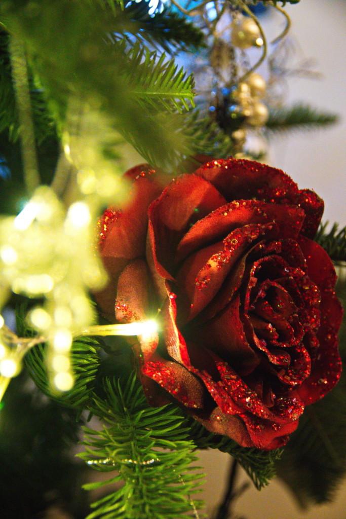 Natale e Luce